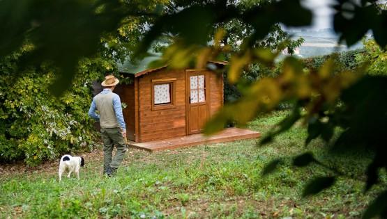 L'habitat del tartufo, strumento di sostenibilità ambientale