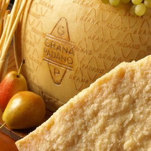 cheese of the langhe grana padano. Black Bedroom Furniture Sets. Home Design Ideas