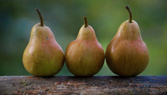 Poe of martin pears and Barolo