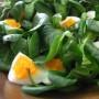 Sarsèt con uova, tonno e cipolline