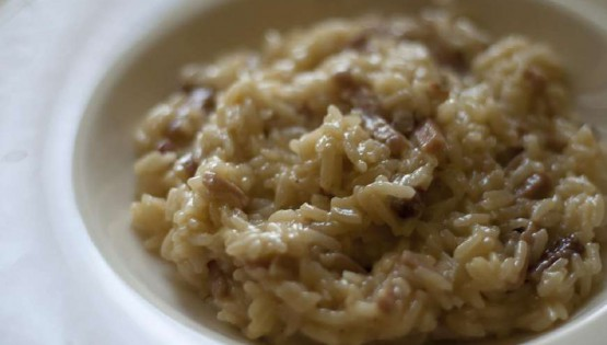 The risotto with grive (fieldfare)