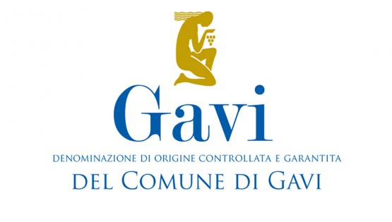 Gavi di Gavi DOCG 2010 – Gemma