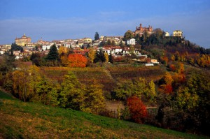 Novello - panorama