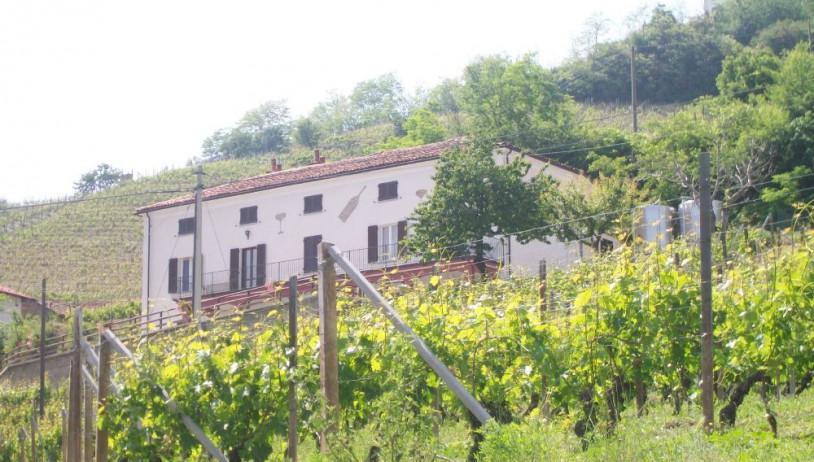 Azienda Gatti Piero