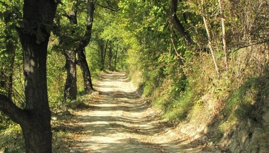 A piedi da Torresina ad Igliano