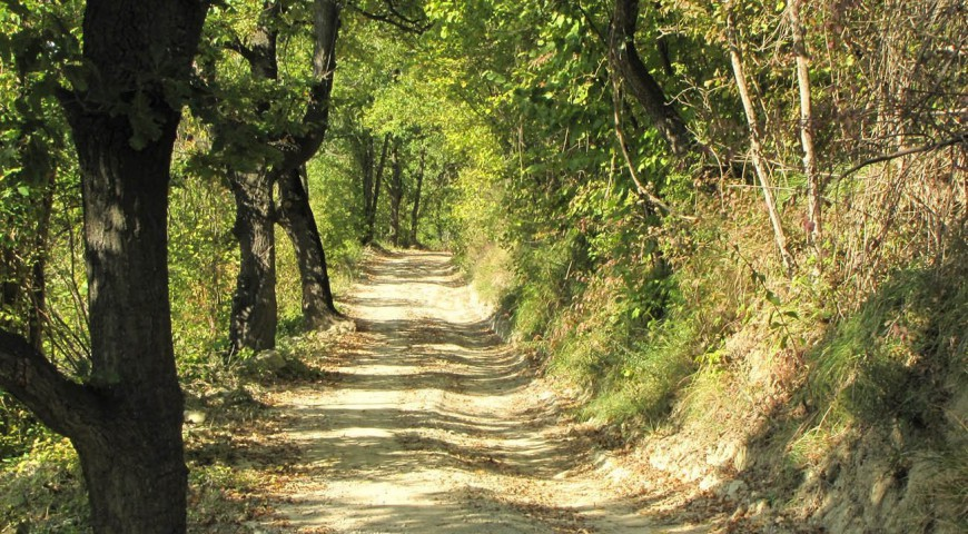 On foot from Torresina to Igliano