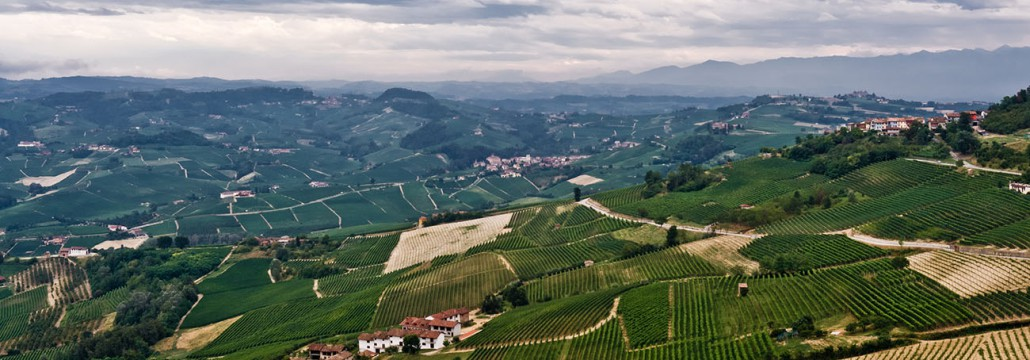 The hills surrounding Barolo