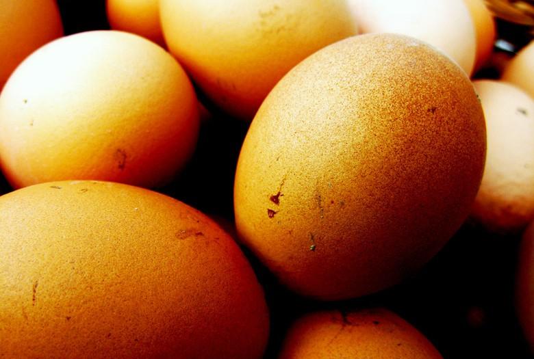 Consigli per il menù di Pasqua – E cosa fare se non hai voglia di cucinare