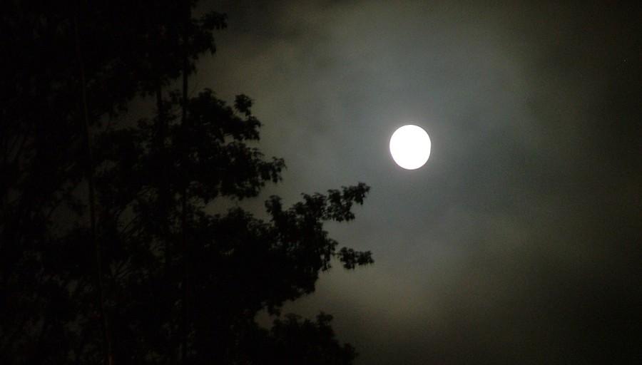 luce_luna_res