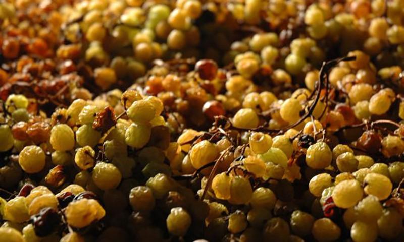 Quot Ultimo Grappolo Vino Bianco Ottenuto Da Uve Passite