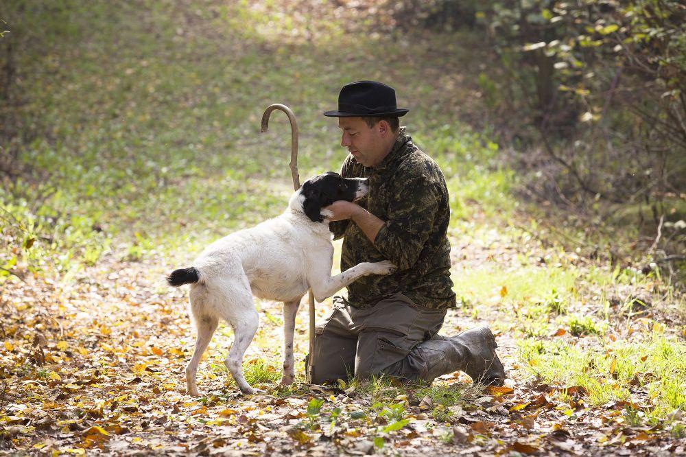 Langhe - Truffles hunting