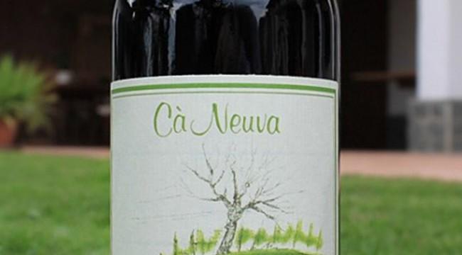 Piemonte Barbera 2011 Ca' Neuva (bottiglia)