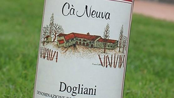 Dogliani DOCG 2013 Ca' Neuva