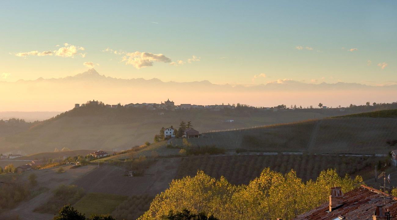 Piemonte barbera 2011 c neuva for Fiere in piemonte oggi
