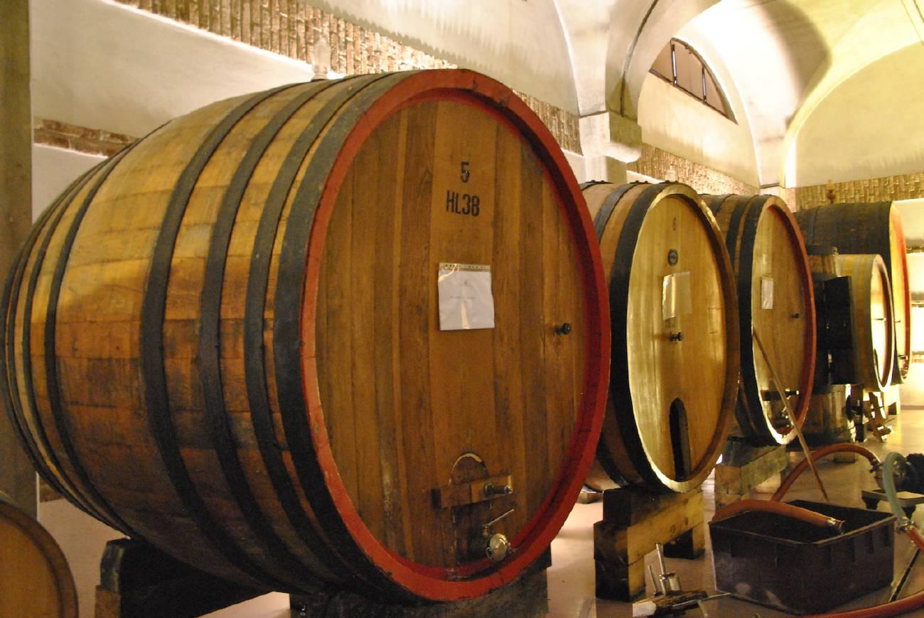 Big oak barrel for Barolo
