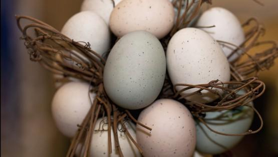Il menù di Pasqua: ricette per un giorno di festa