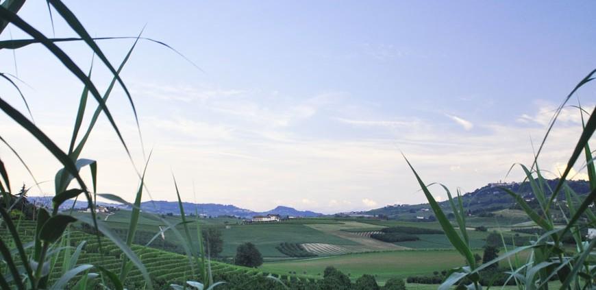 Le colline delle Langhe viste da Roddi