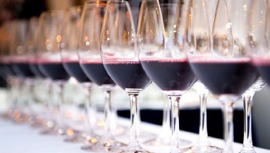 Wine Tasting Experience®: Il gusto del territorio