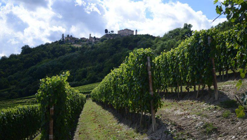 Borgogno Rivata