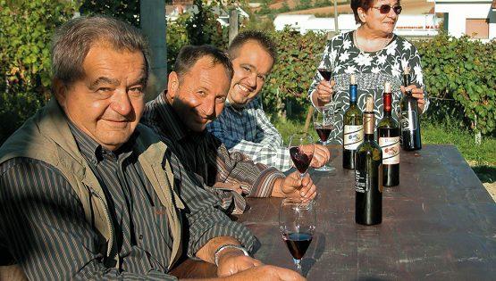 Scopriamo l'Alba DOC insieme alla Cantina Luigi Drocco