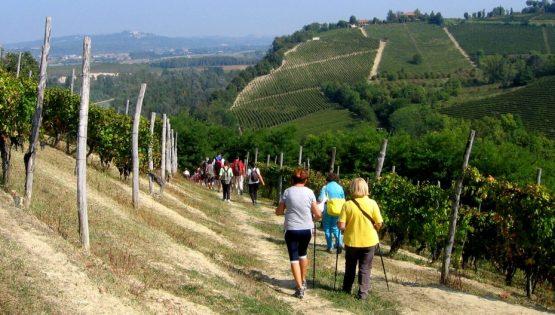 Pasquetta sulle colline del Roero con merendina al Ciabot del Trifolao