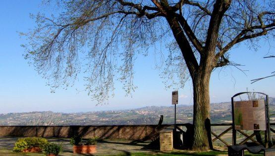 Il sentiero dei Castelli, dei frutteti e dell'Arneis