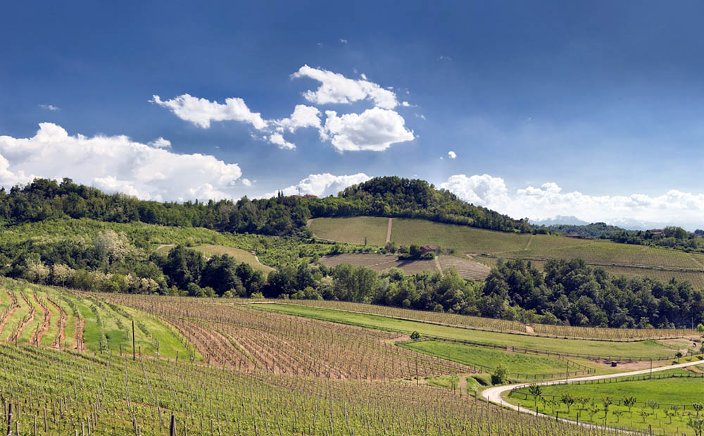 Panorama delle Langhe