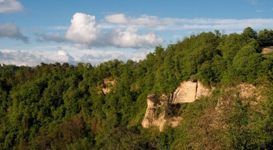 Rocche Monteu Roero