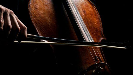 Musica da camera: Violoncello romantico