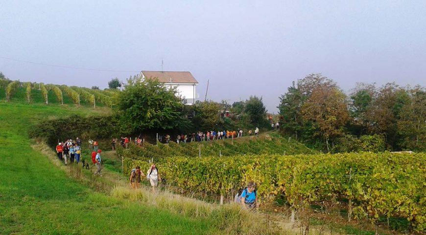 Passeggiata Enogastronomica Santo Stefano