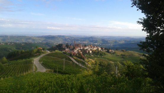 Aspettando il trail del Moscato: corsa podistica