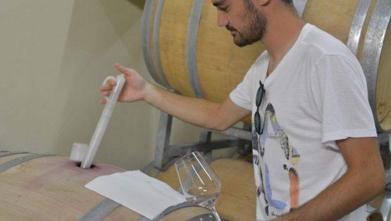 Bianco Angelo e Figlio: cantine aperte per Vinum