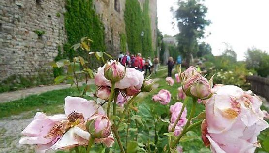Il gran sentiero del paese delle rose