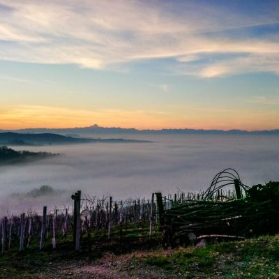 Vista panoramica - Azienda Agricola Runchét