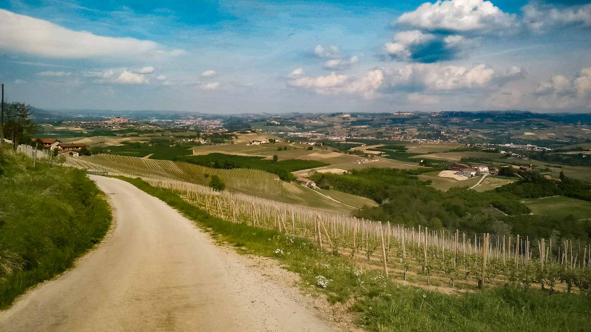 The vineyards and Santa Maria - La Morra