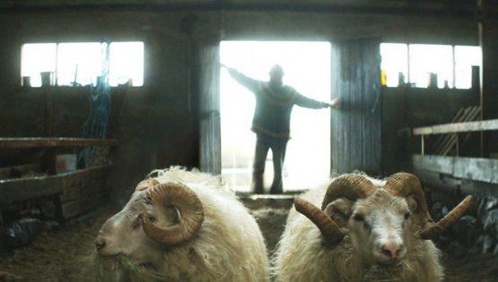 Il grande cinema sotto le stelle: cena islandese + proiezione Rams
