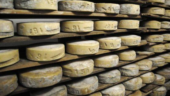 Cheese: il giro del mondo in 80 caci