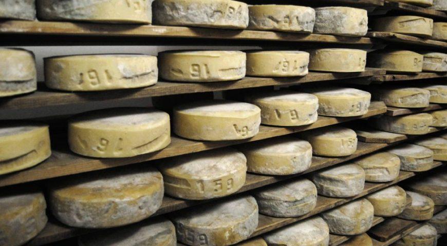 Cheese - Caci - Eventi