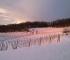 Cascina Sòt - Tramonto invernale tra i filariCascina Sòt - Tramonto invernale tra i filari