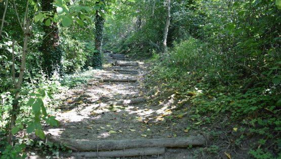 Trail running e cross walking: El Sentè di Partigian