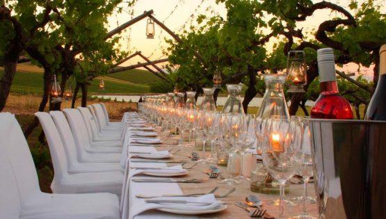 Festa della vendemmia: cena nelle vigne