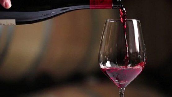 Domenica in Cantina: degustazione con i produttori di Agliano Terme