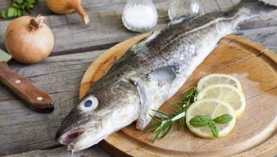 Barbera Fish Festival: il merluzzo incontra la Barbera d'Asti