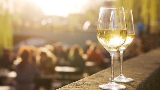 Vini e terre di Borgogna: L'altra Borgogna