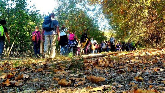 La camminata delle memorie d'autunno con castagnata