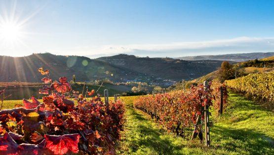 Il Sentiero della Contessa di Castiglione e del Moscato