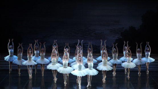 Teatro: Il lago dei cigni