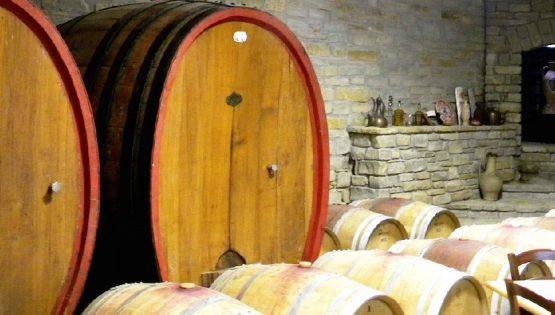 Cantine Torelli: 25 anni di Vino Biologico