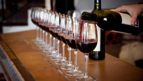 Introland: vini biologici, naturali, biodinamici