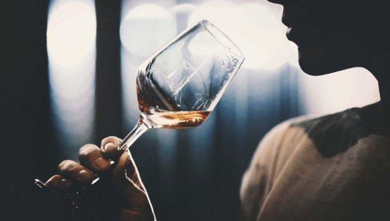 Degustazione vini: le Marche. D'in sulla vetta della torre antica